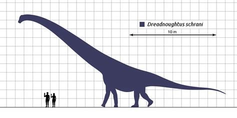 Dreadnoughtus - Wiktionary