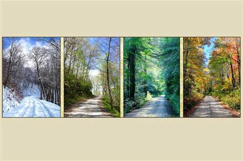 """""""FOUR SEASONS COUNTRY ROADS"""" Photography on Canvas"""