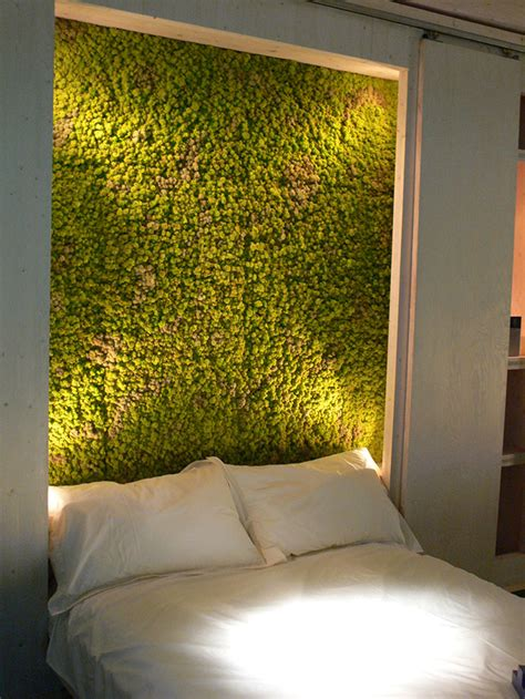 Moss Walls: The Interior Design Trend That Turns Your Home