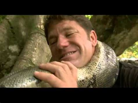 Animal Clip Of The Week Strangled By A Boa Constrictor