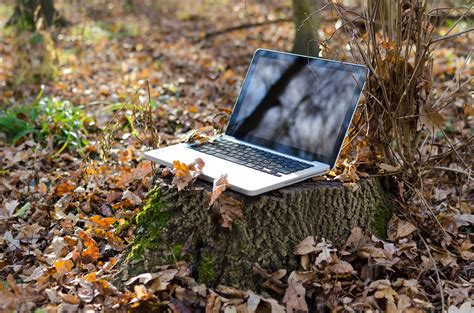 Free Images : laptop, notebook, computer, work, screen