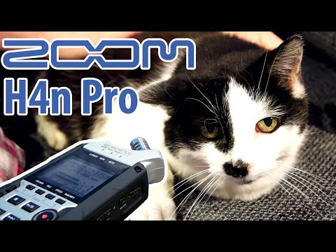 Zoom H4n Pro 4-Channel Handy Recorder ZH4NPRO B&H Photo Video